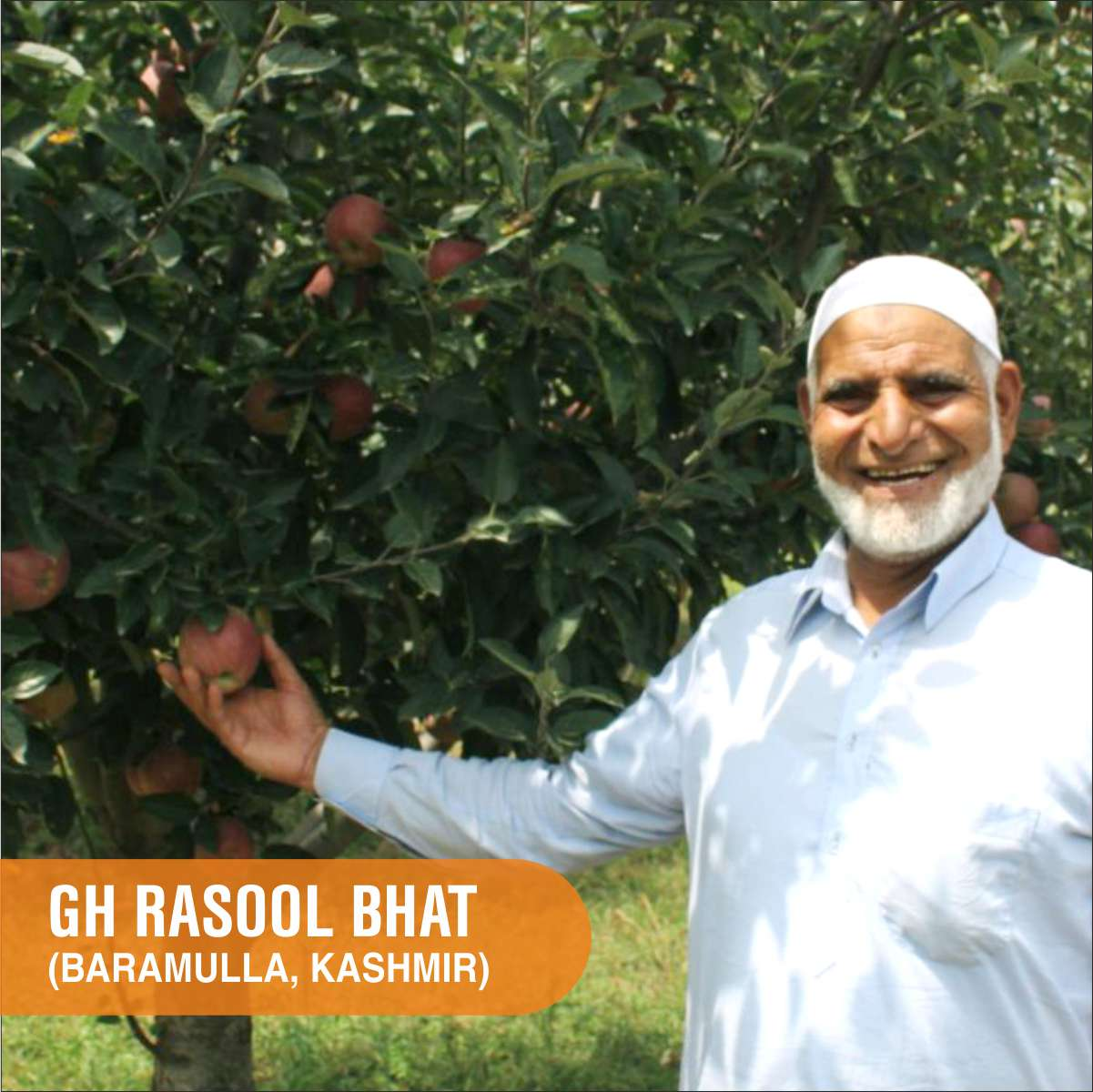 Apple farmer Rasool Bhat